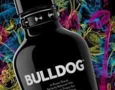 Campari acquisisce il gin premium Bulldog
