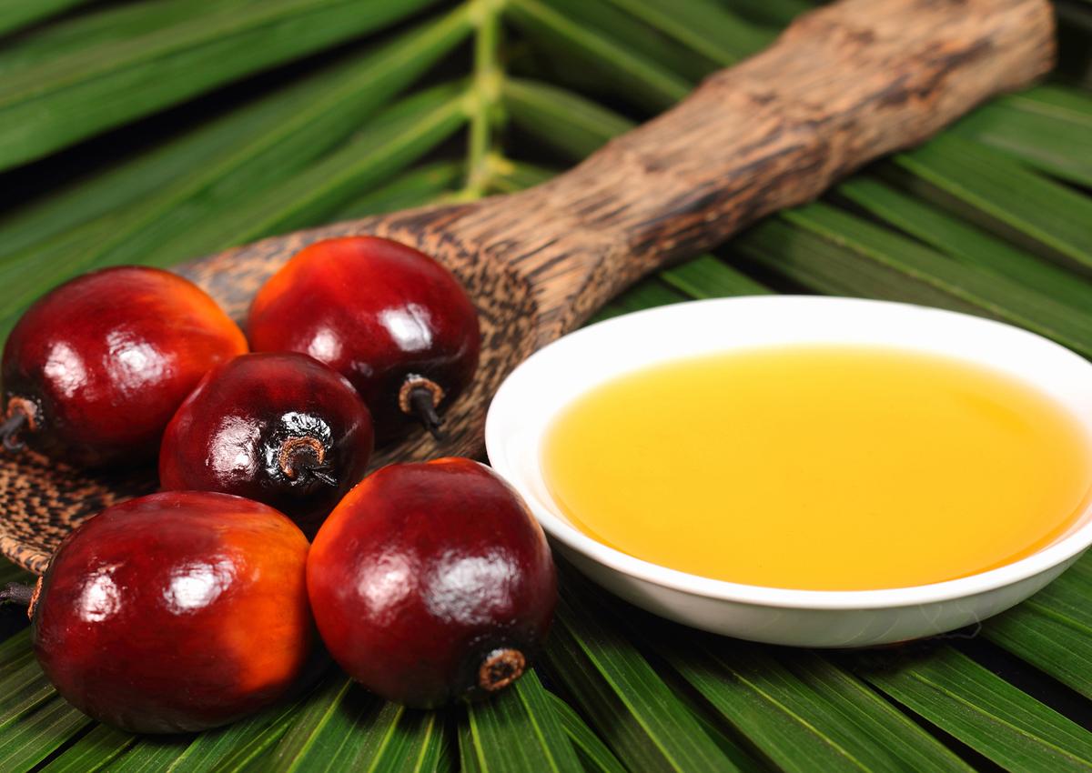 Olio di palma, UE punta sulla sostenibilità