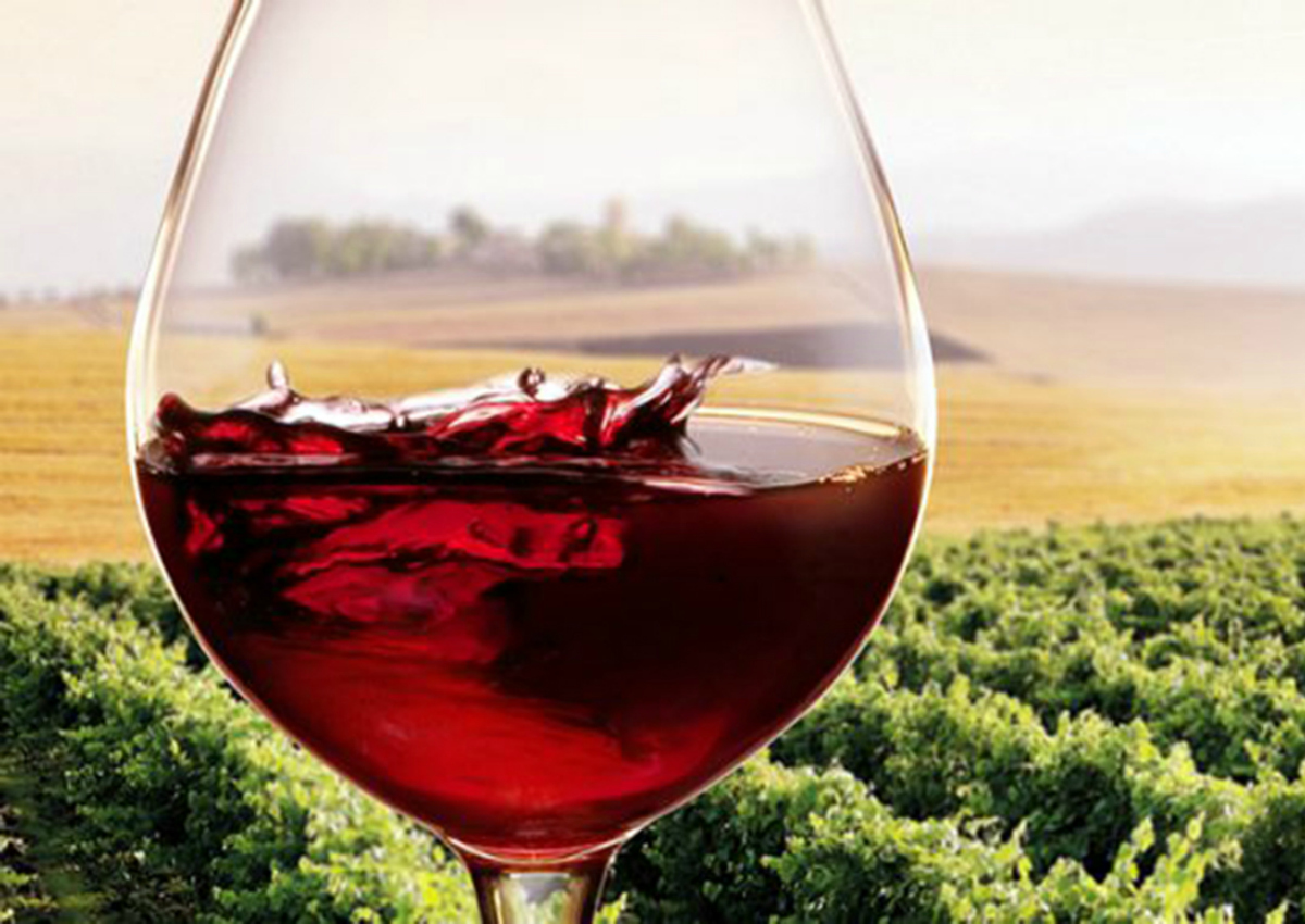 Vino Made in Italy: aumenta l'export