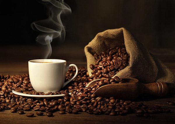 Kimbo, a lezione di caffè