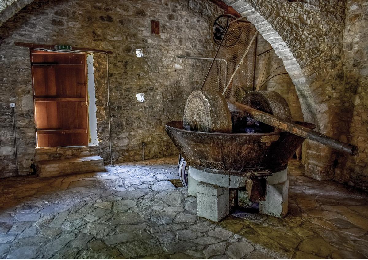 Olio di oliva, produzione ai minimi storici